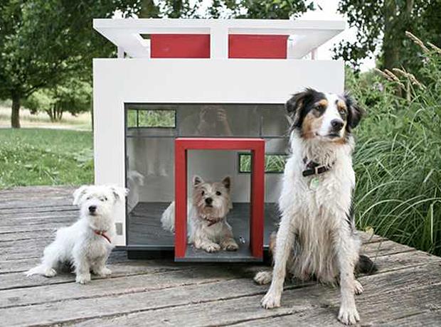будка собаки