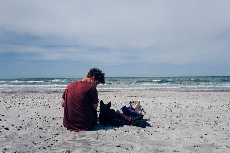 собака пляж