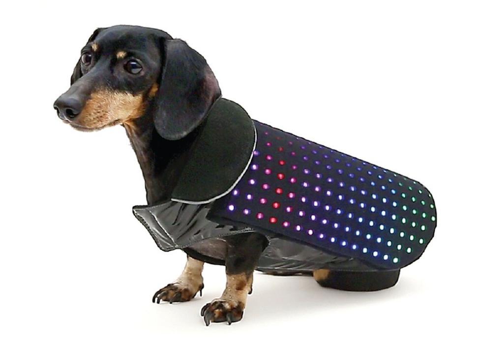 жилетка с аудиосистемой для собак