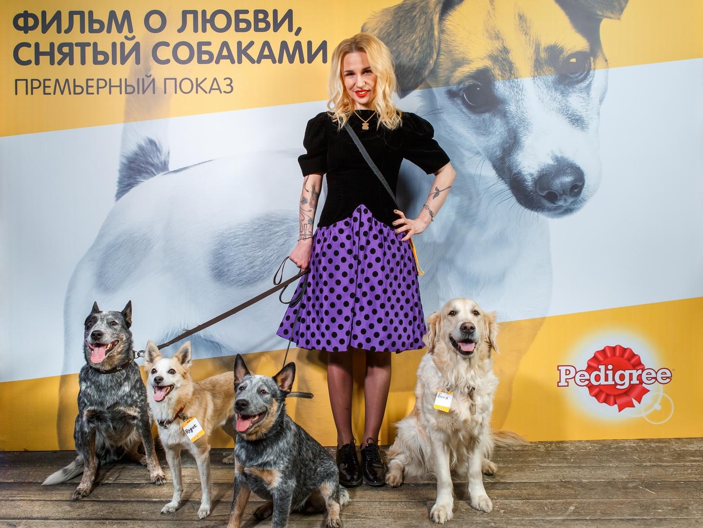 Гай Германика и собаки