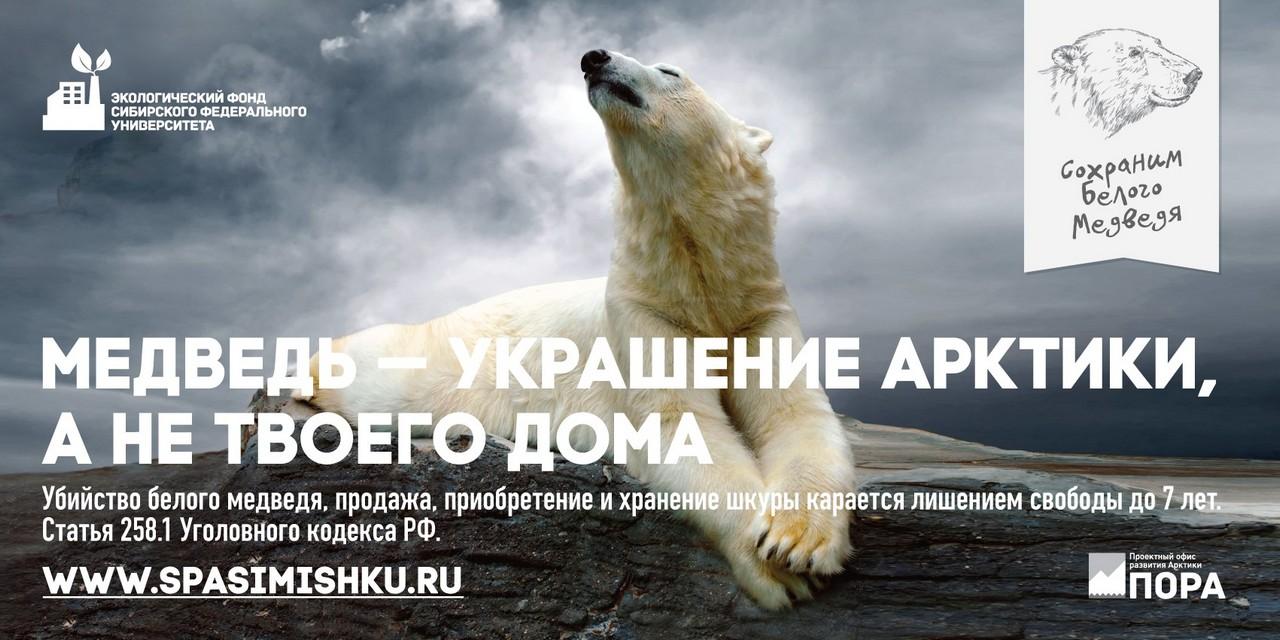 спасем белого медведя