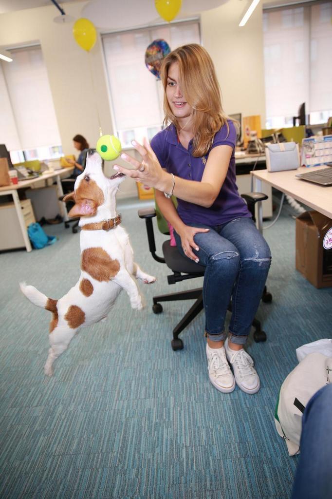Mars возьми собаку с собой на работу