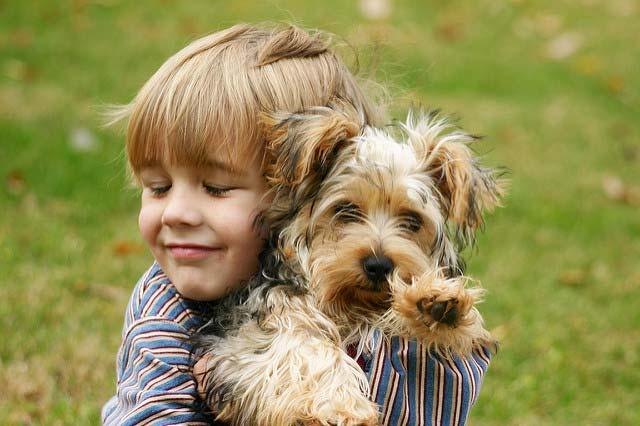 мальчик и собачка