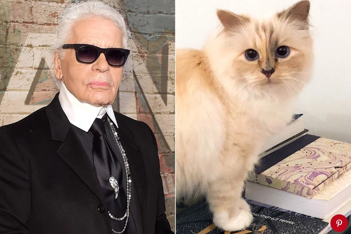 Lagerfeld и его кошка