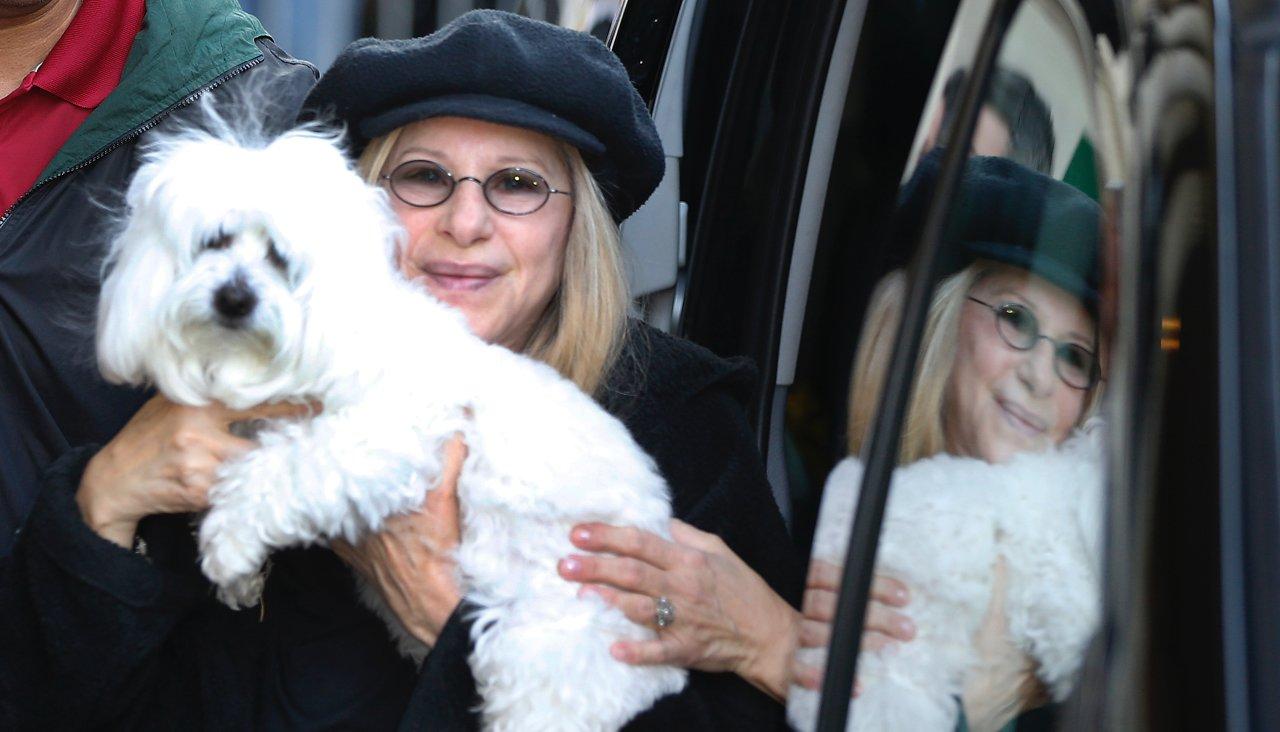 Baraba Streisand