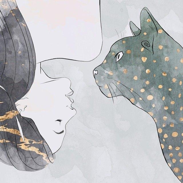 Показатели, по которым человек уступает кошке