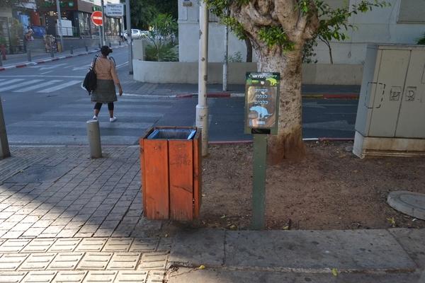 Тель-Авив - город собак