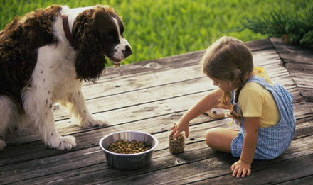 Девочка кормит собачку