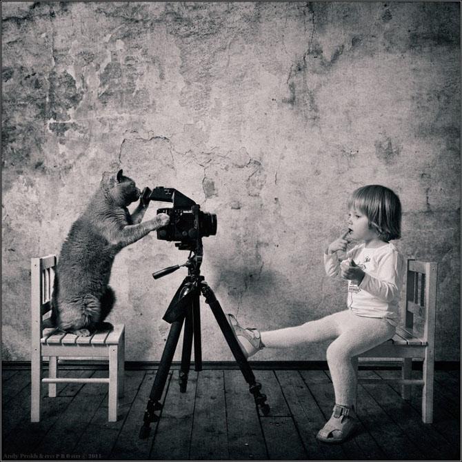 кот фотограф и девочка