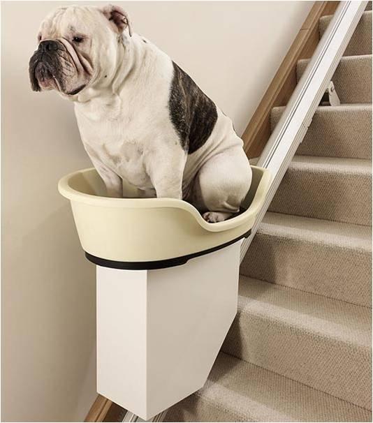 Механическая корзина для собак