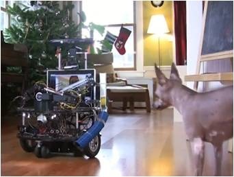 Робот для собаки