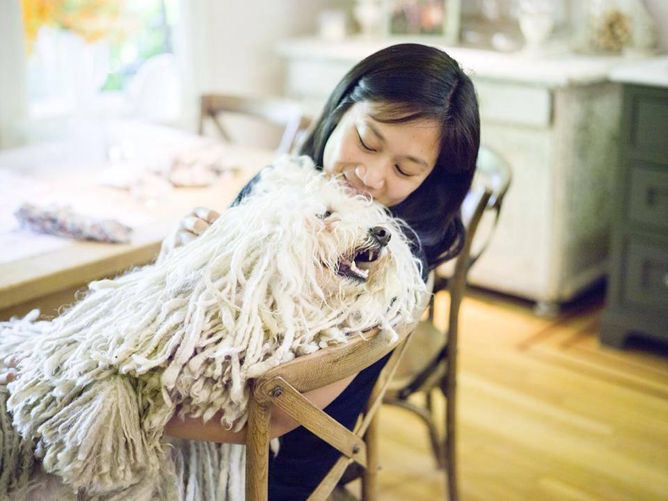 Мохнатая собака Биста