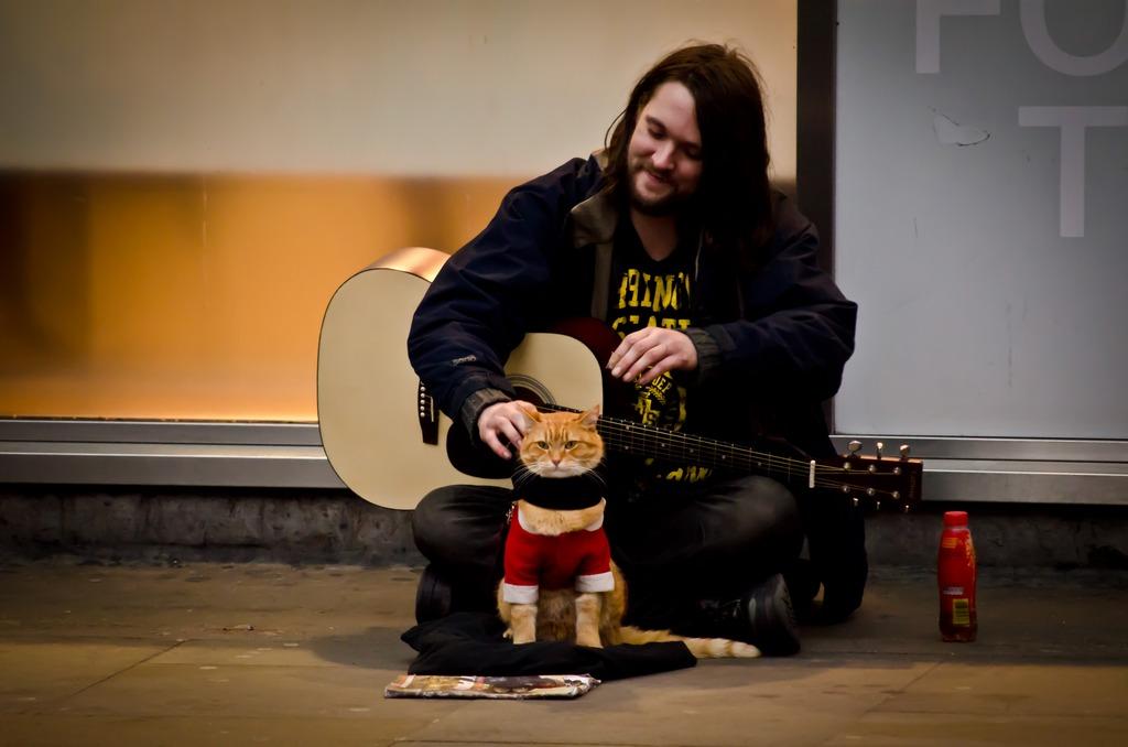 Кот Боб и гитарист