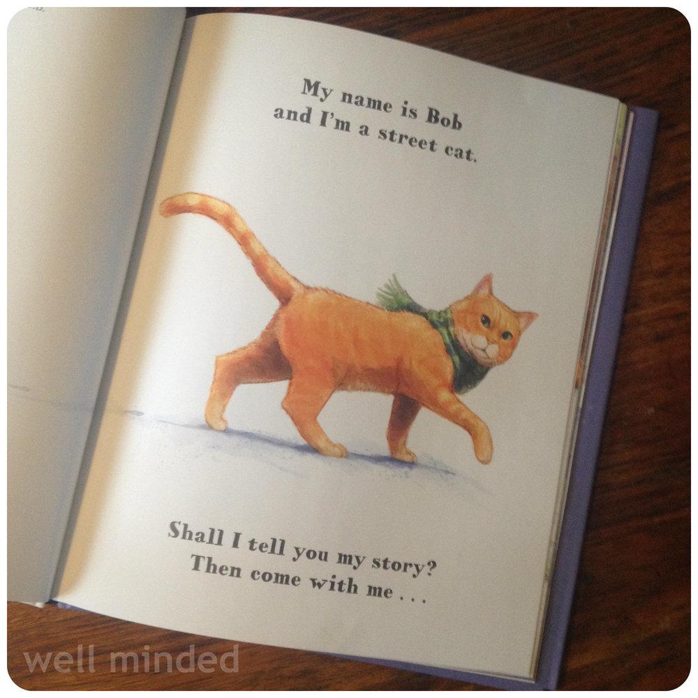 Книжка о уличном котике