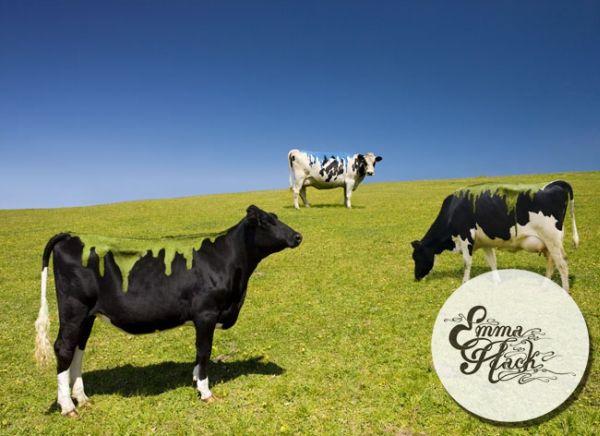 художница  и корова