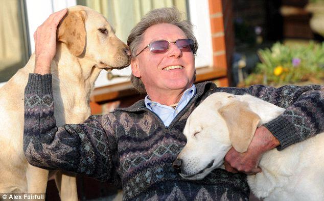 собака поводырь ослепла